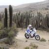 Sjaak Martens brengt Dakar Rally 2013 tot een goed einde